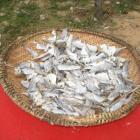 Will jemand Fisch?