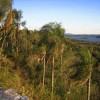 Kleiner Ausflug im Park Teyu-Cuare