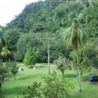 Unser Dschungelcamp