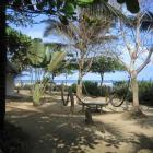 Der Garten vom Hotel/Camping Bambu