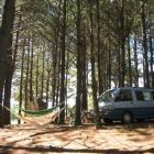 Zeltplatz mitten im Wald...