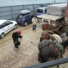 Gauchos en el barco