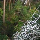 Natur pur in Santa Teresa