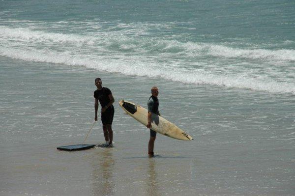 """Surfen und """"Gassi"""" gehen"""