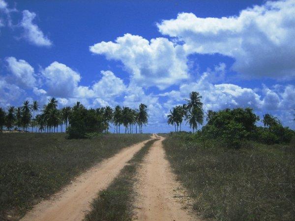 Vielversprechender Weg zum Strand