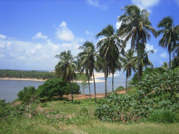 Die Kueste im Nordosten mit Palmen und Straenden,...