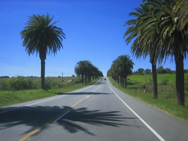Strasse in Uruguay