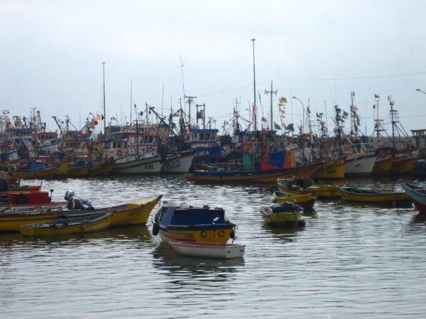 Pazifikhafen in Caldera