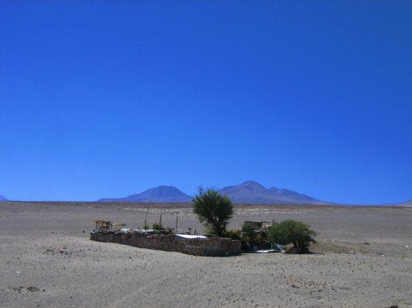 Atacama - Ausnahme!