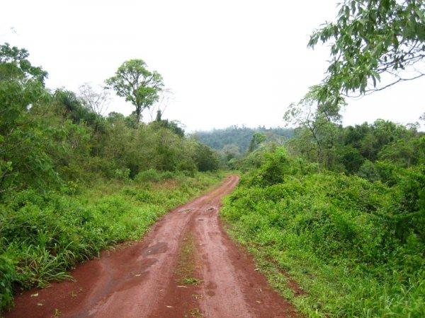 Der Weg Richtung Salto Mocona