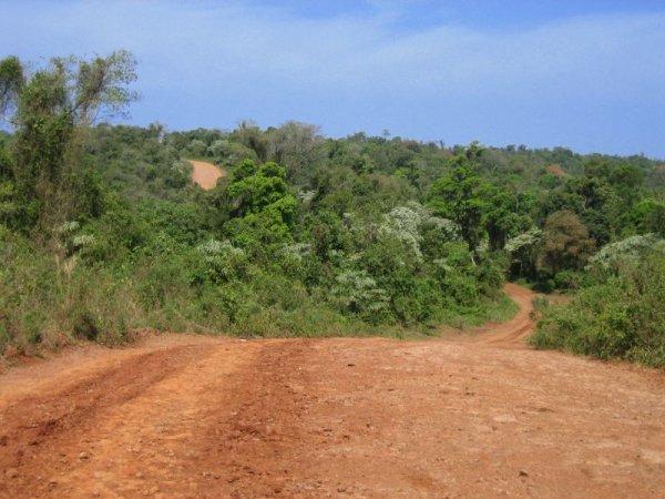 Traumstrassen in der selva