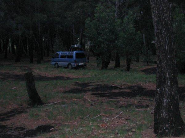 Camping - mitten im Wald