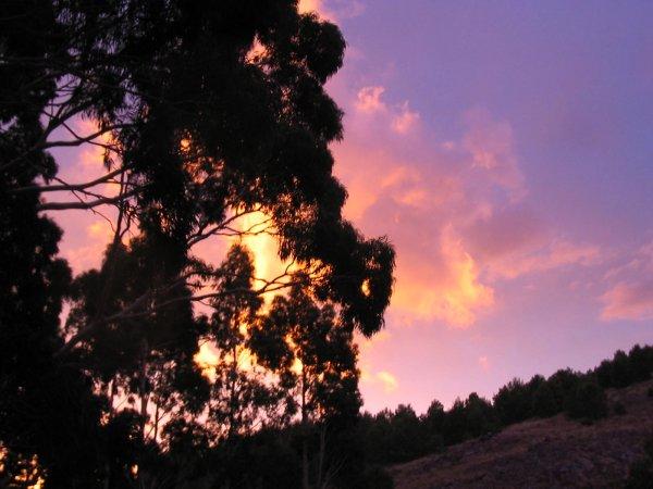 Sonnenuntergang - Nach dem Regen