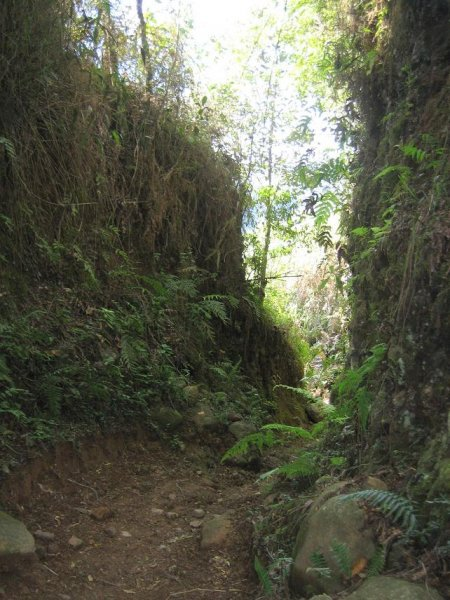 Wanderweg von Salento nach Boquia