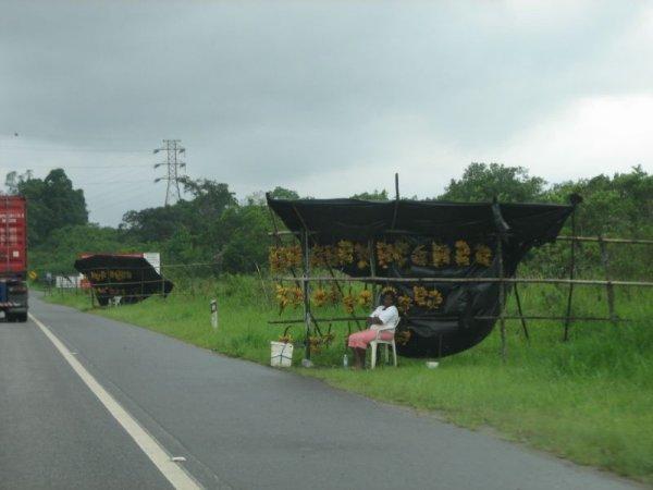 Verkaufsstaende an der Autobahn