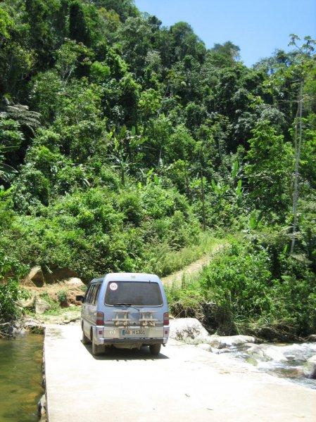 Mal wieder verfahren im Dschungel