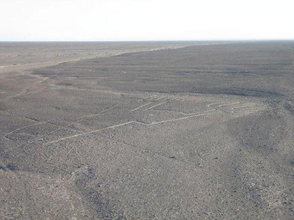 Die Linien von Nazca - beeindruckend?
