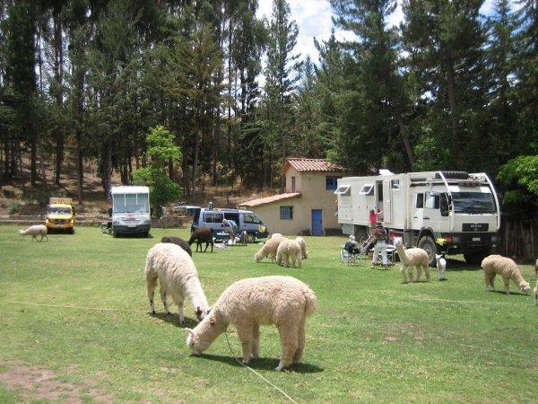 Camping in Cuzco - wir wie immer die Kleinsten