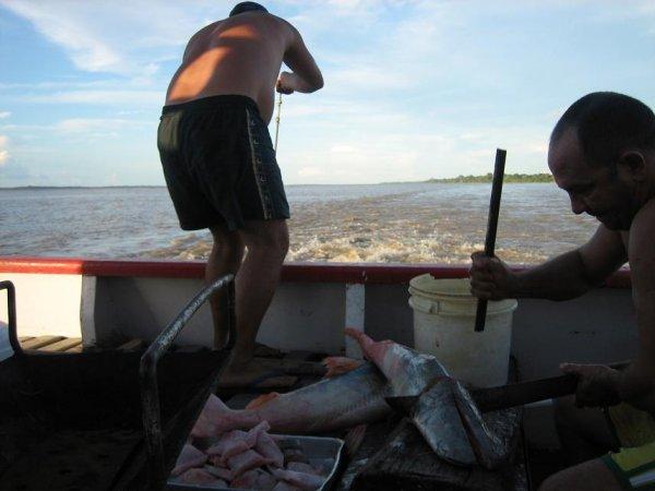 Der Kapitaen beim Fisch zerlegen