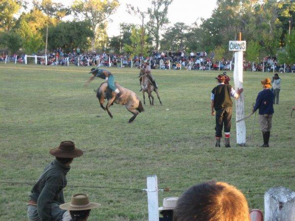 Rodeo in Paysandu
