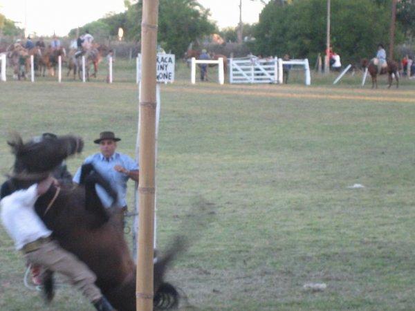 Rodeo oder Ringkampf