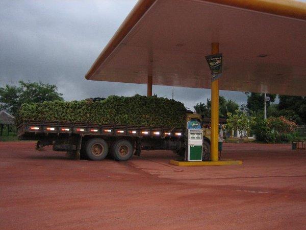 Tankstelle im Dschungel