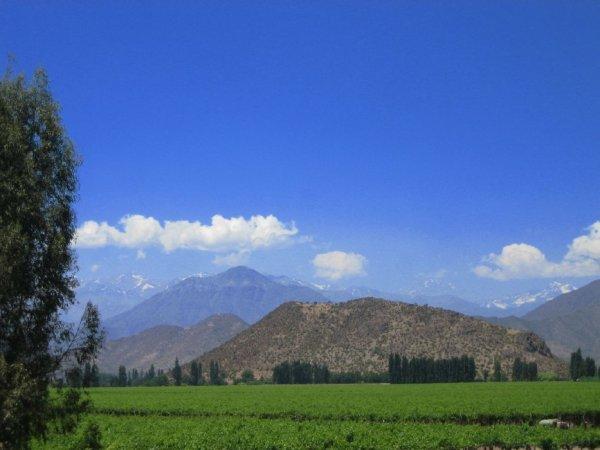 Weinanbaugebiete um Santiago