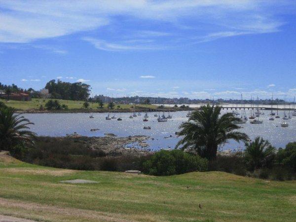 Der Yachthafen in Montevideo