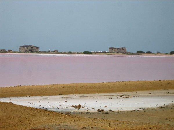 Salzlagune in pink