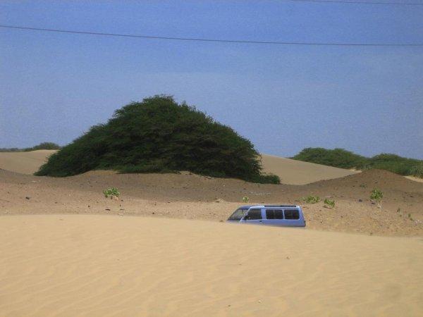 ... bei den Sandduenen von Coro!