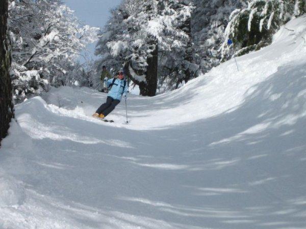 Skihaserl beim wedeln!