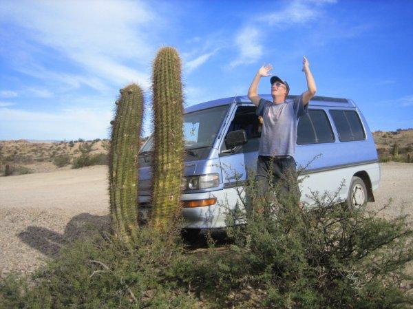 """""""Unfall"""" mit Kaktus, seit Jahren mein Traum!!!"""